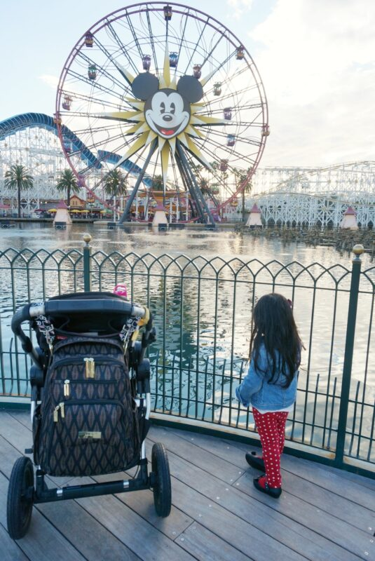 {Disneyland} Packing Tips for a Day with your Preschooler