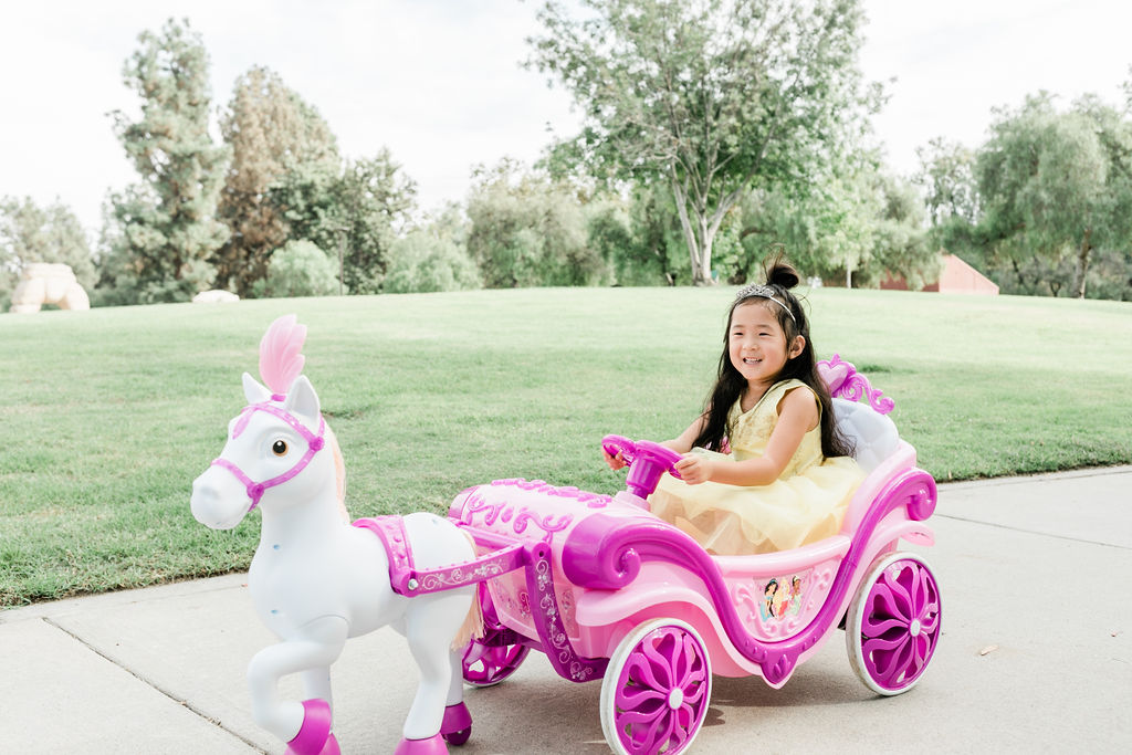 Disney Royal Horse and Carriage: The Ultimate Holiday Gift- from Huffy